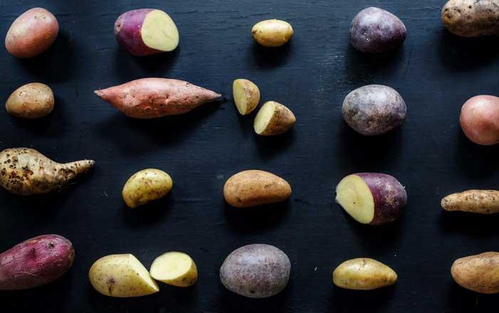 istoria cartofului istorie cartof